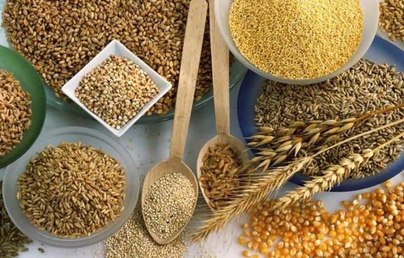 Los cereales que no contienen gluten