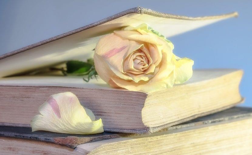 Un libro y una rosa que suelen regalarse el día de San Jordi.