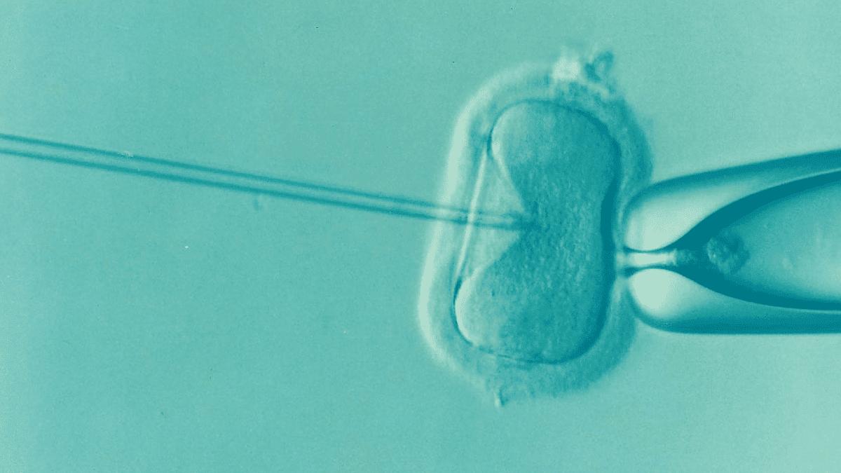 inseminación artificial infertilidad