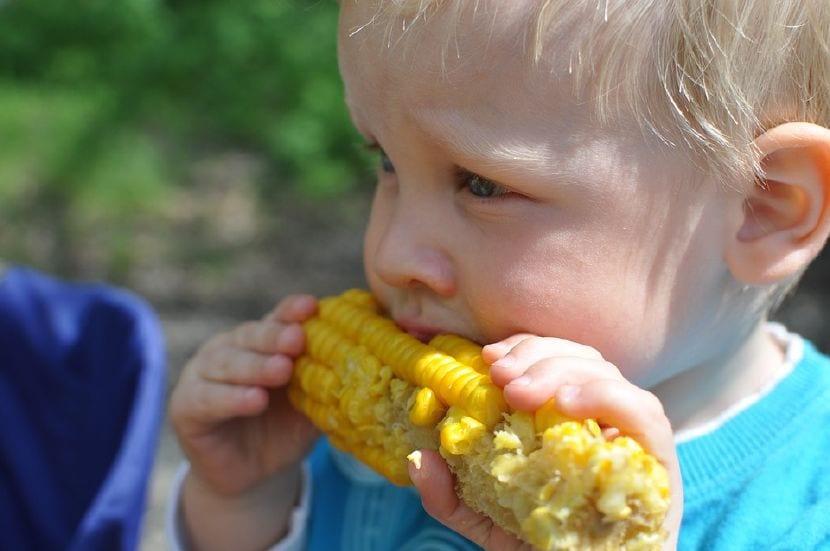 masticar bien niños