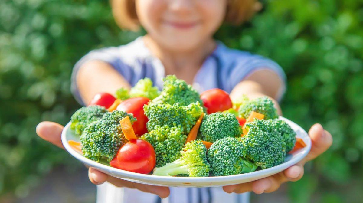 Dieta equilibrada para los niños