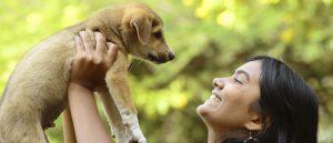 Conciencia a tus hijos sobre el cuidado de las mascotas