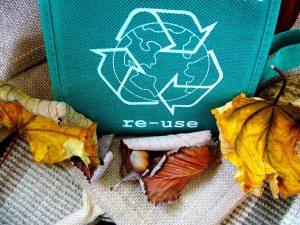 7 consejos para enseñar a los niños a cuidar el medio ambiente