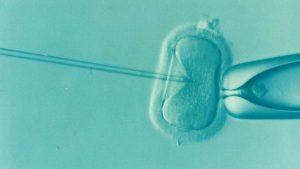 qué es la preservación de la fertilidad