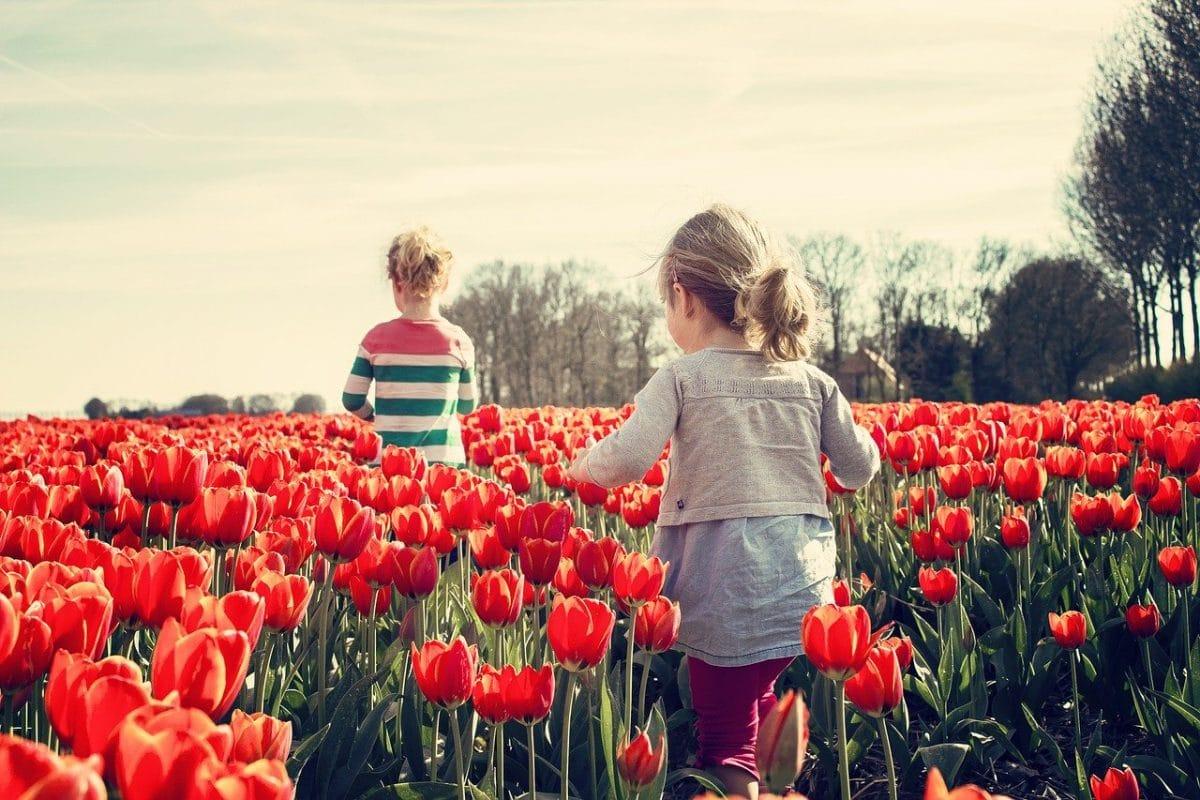 crianza: en el pueblo o en la ciudad