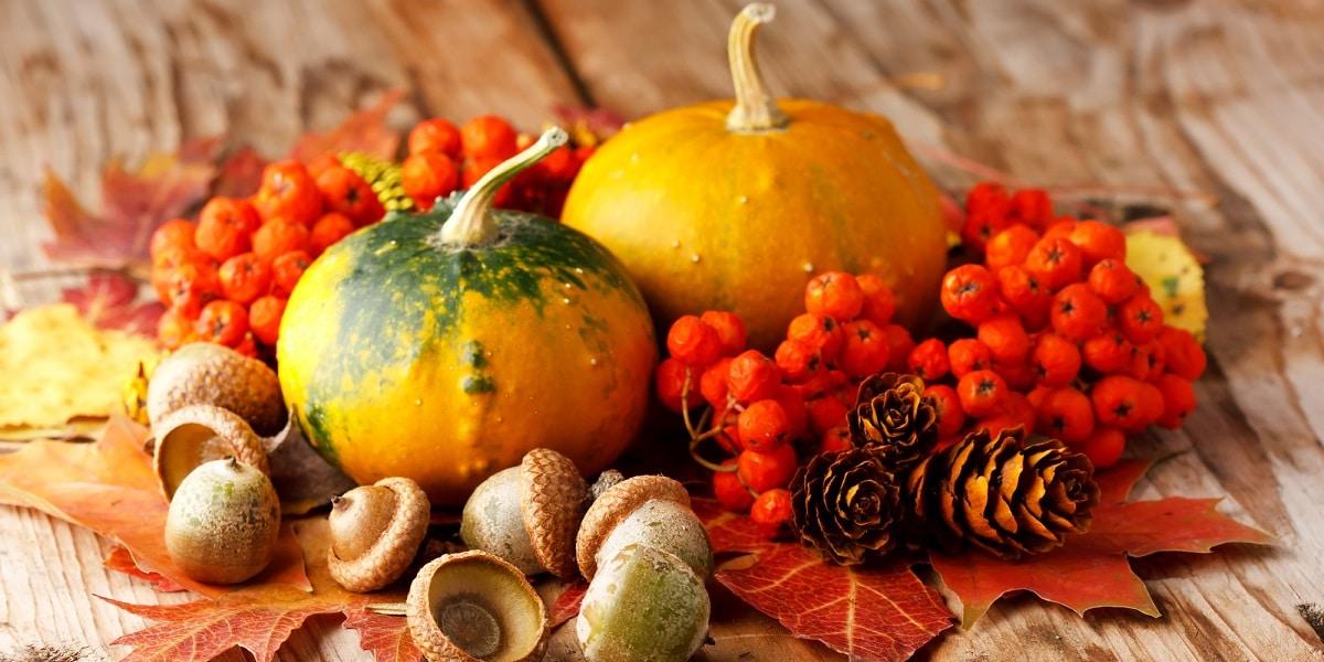 Productos de temporada de otoño
