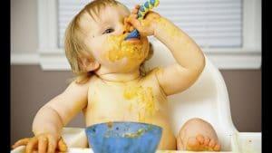 Pautas alimentacion complementaria