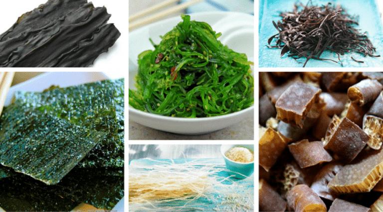 alimentos del mar