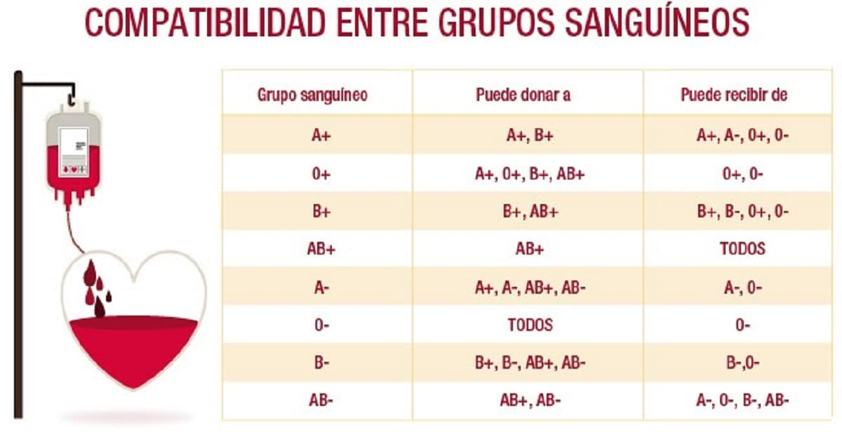 Compatibilidades grupos sanguíneos