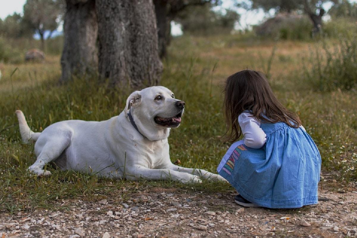 Niña con su mascota al aire libre